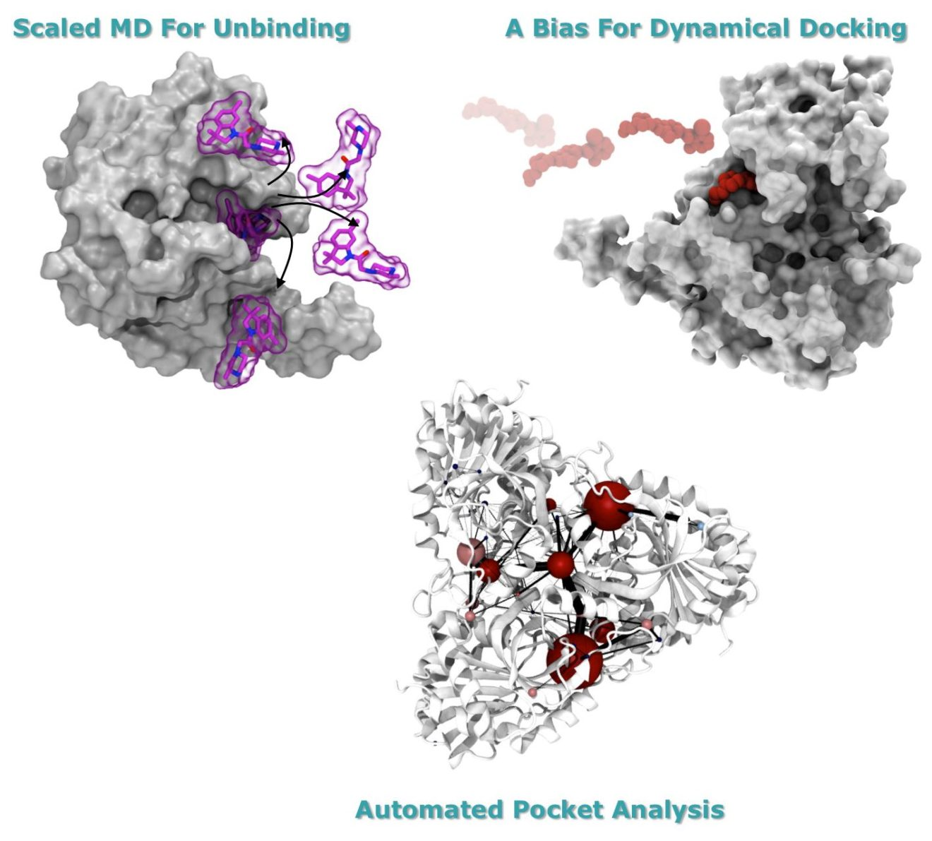 Webinar: Finding a trade-off between speed and accuracy in protein-ligand binding description (2018-04-26)