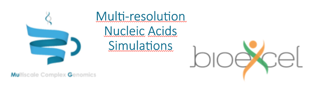 Experiences from the Joint MuG-BioExcel Workshop: Multiscale Nucleic Acids Simulations