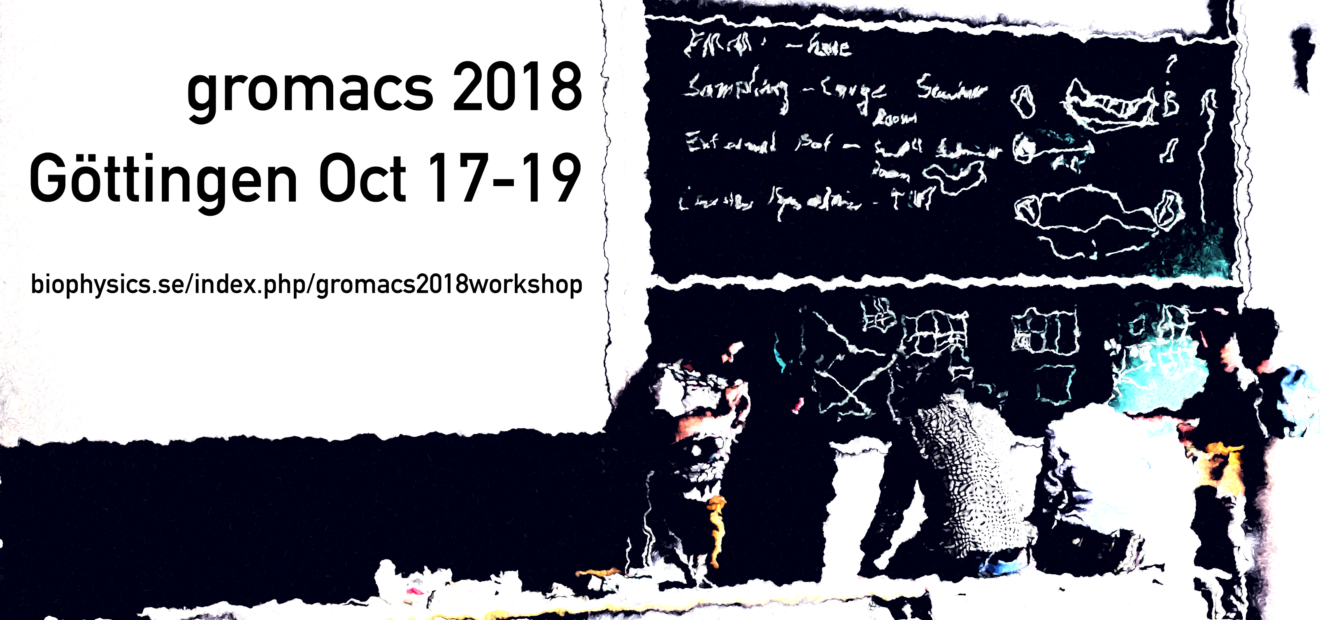 GROMACS 2018 developer / power-user workshop