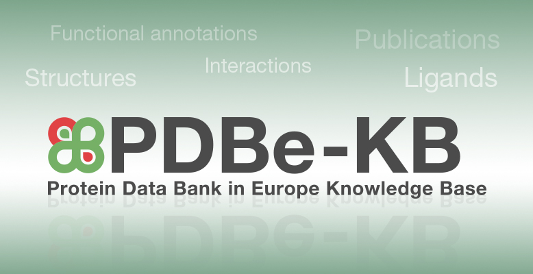 Making sense of PDB data with PDBe-KB