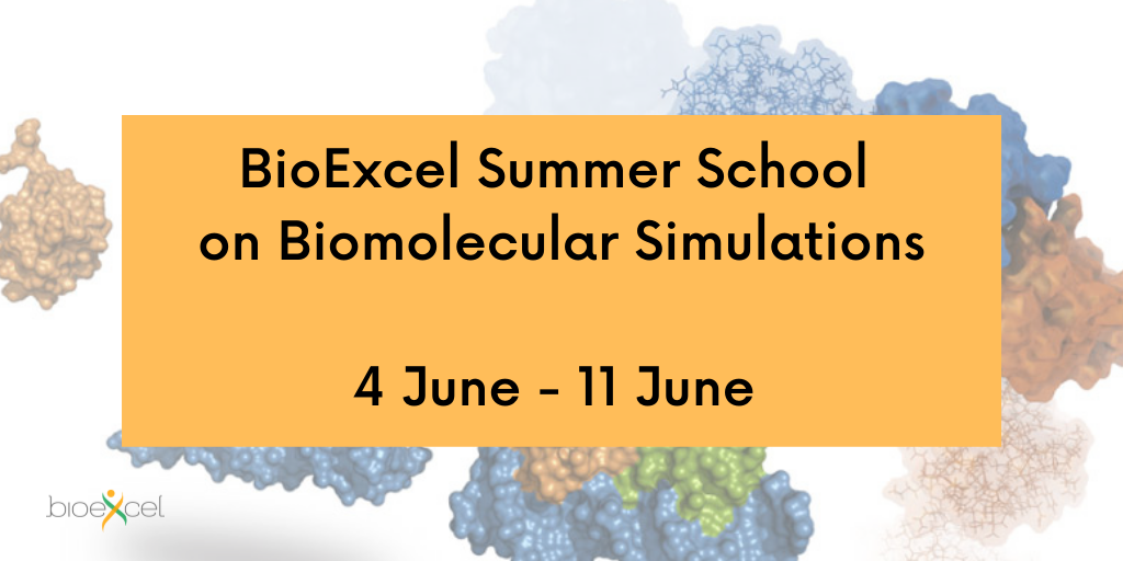 Summer School on Biomolecular Simulations to be held from 4 - 11 June